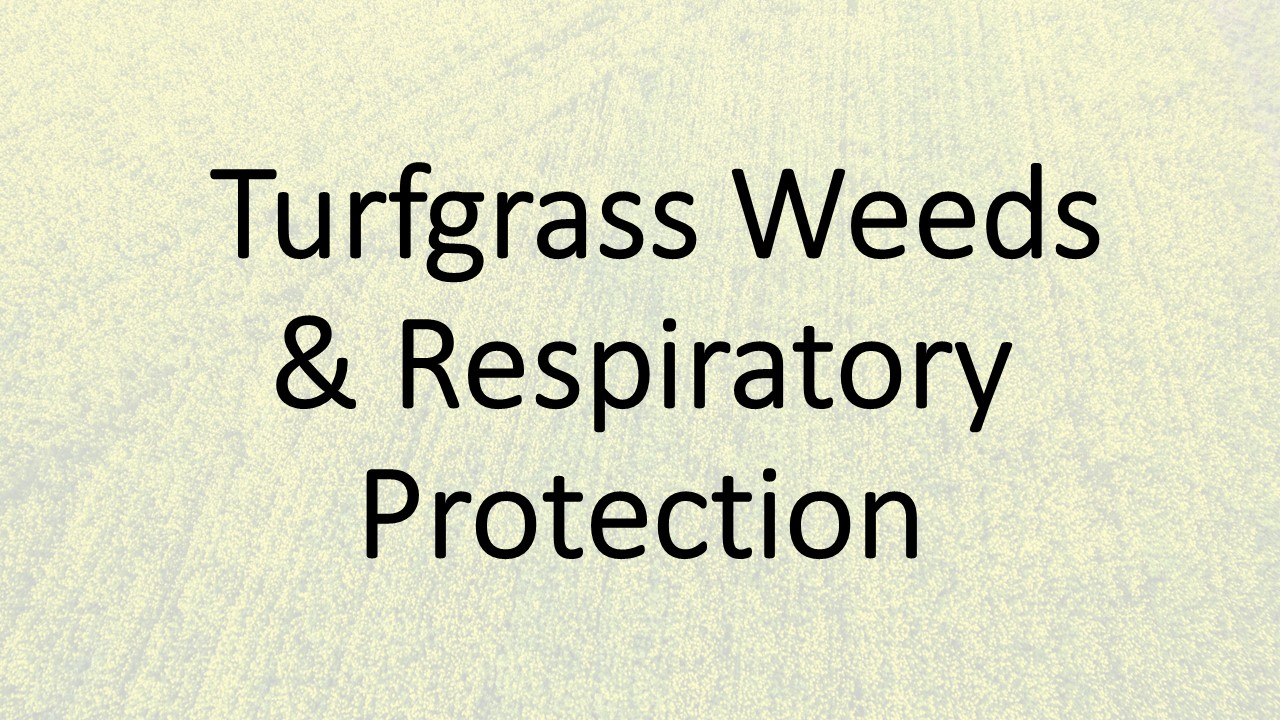 Turfgrass Weed and Respiratory